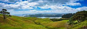 Panorama van het heuvellandschap, Nieuw Zeeland