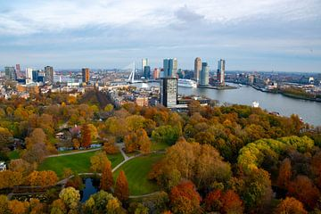 Herfst in Rotterdam met uitzicht op de Erasmusbrug vanaf de Euromast van Merijn Loch