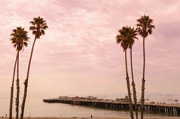 Palmbomen Santa Cruz USA van Ronald Tilleman