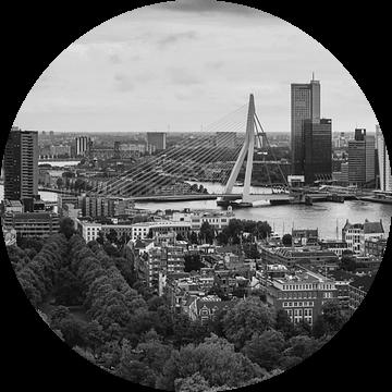 Panorama Skyline Rotterdam Euromast Zwart Wit van Vincent Fennis