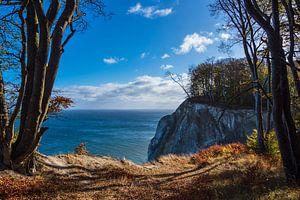 Kreidefelsen an der Ostseeküste auf der Insel Moen in Dänemark