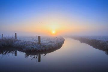 Nachtfrost von Bart Verbrugge