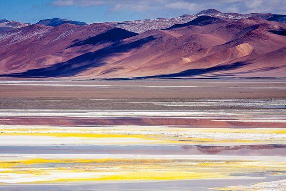 Salar de Atacama 1