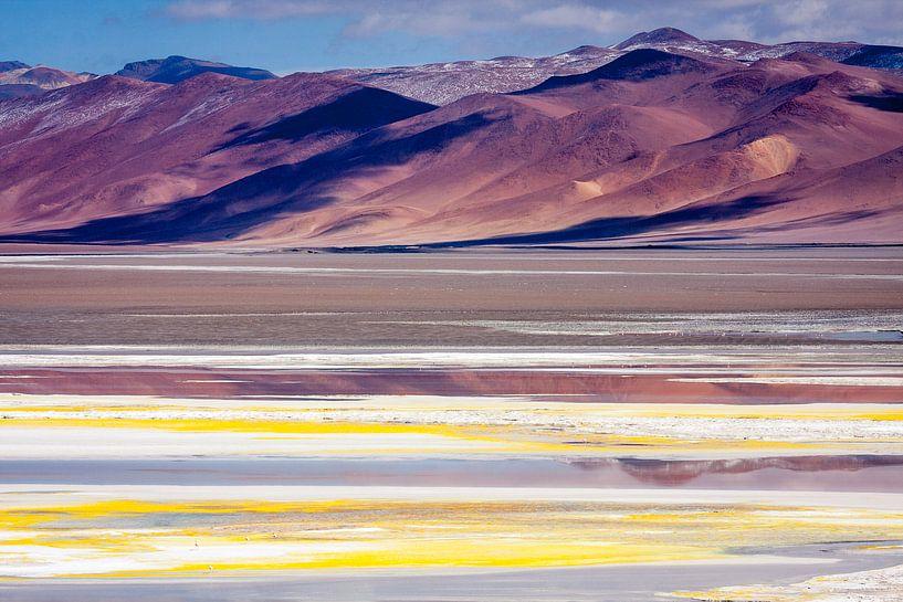 Salar de Atacama 1 van Eriks Photoshop by Erik Heuver