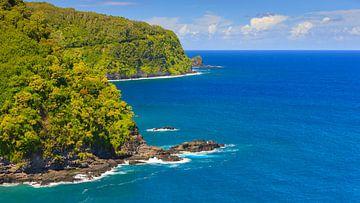 Meerblick von der Straße nach Hana, Maui, Hawaii von Henk Meijer Photography