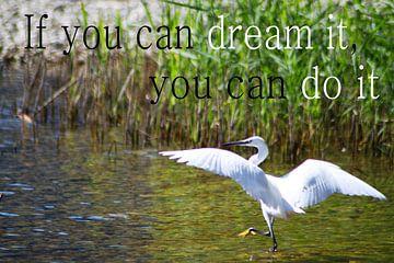 If you can dream it, you can do it van Iris van Bokhorst