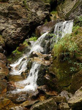 Riesloch Watervallen bij Bodenmais, Beieren 8 van Jörg Hausmann