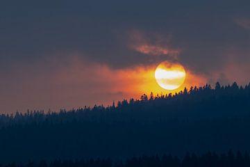 Zonsondergang in de lente van Joseph Selier