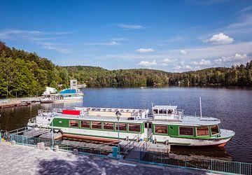 Gezicht op de haven van de Kriebstein-dam in Saksen van Animaflora PicsStock