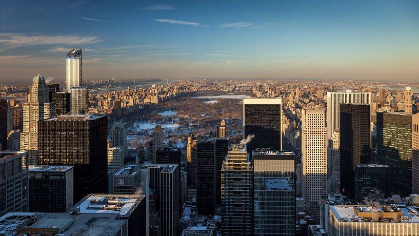 Central Park - New York van Ivo de Bruijn