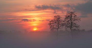 Sonnenuntergang im Nebel an der Doezumertocht von Annie Jakobs