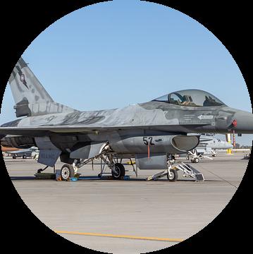NSAWC Agressor Squad op Naval Air Station Fallon vliegt met de F-16 A/B Fighting Falcons. van Jaap van den Berg