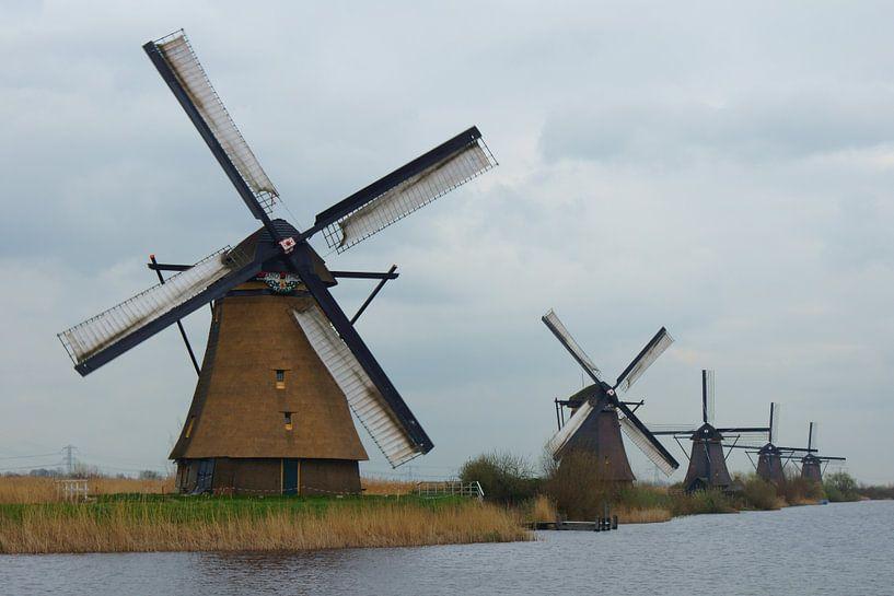 Kinderdijk van Michel van Kooten