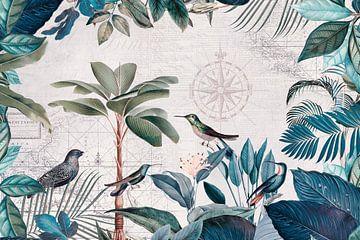 Die abenteuerliche Reise der Vögel von Andrea Haase
