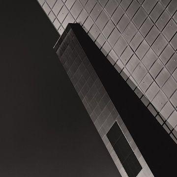 Delftse Poort Monochroom van Insolitus Fotografie