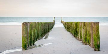 Strandpalen tijdens zonsopkomst von Evert Jan Kip