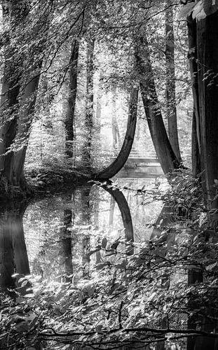 De oelerbeek van