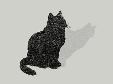 Chat à pois sur Qeimoy