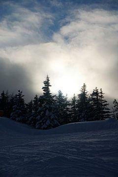Sonnenuntergang vom Skijuwel Alpbachtal-Wildschönau mit verschneiten Bäumen (Tirol, Österreich) von Kelly Alblas
