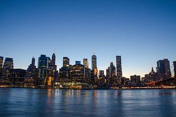 Skyline NY vanaf Brooklyn Bridge Park von Karin Mooren