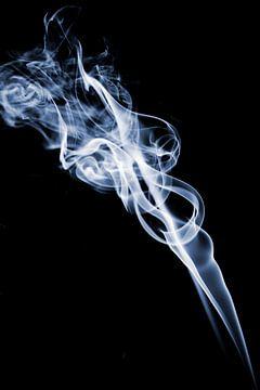 Rook fotografie von Liesbeth van Asseldonk