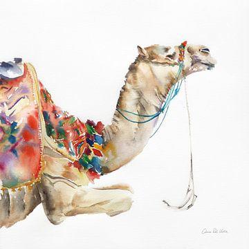 Woestijn kameel i, Aimee Del Valle van Wild Apple