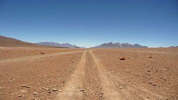 'Weg door woestijn', Bolivia von Martine Joanne