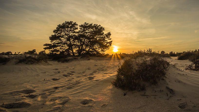 Zonsondergang Aekingerzand  van Martzen Fotografie