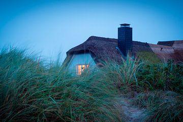 Haus in der Düne von Martin Wasilewski