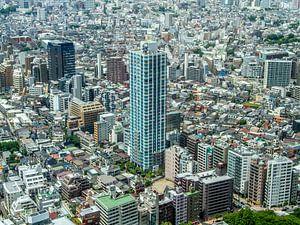 Tokyo met in het midden de Citytower Shinjuku Shintoshin van Wijbe Visser