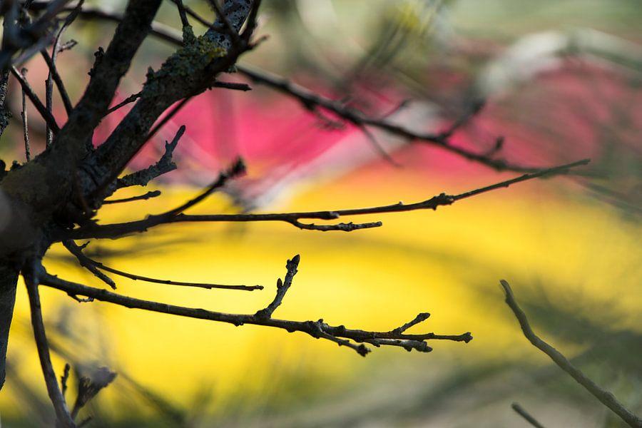 Sacre du printemps van Raoul Suermondt