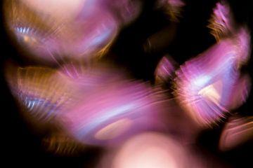 Paarse en Blauwe Hersengolven van