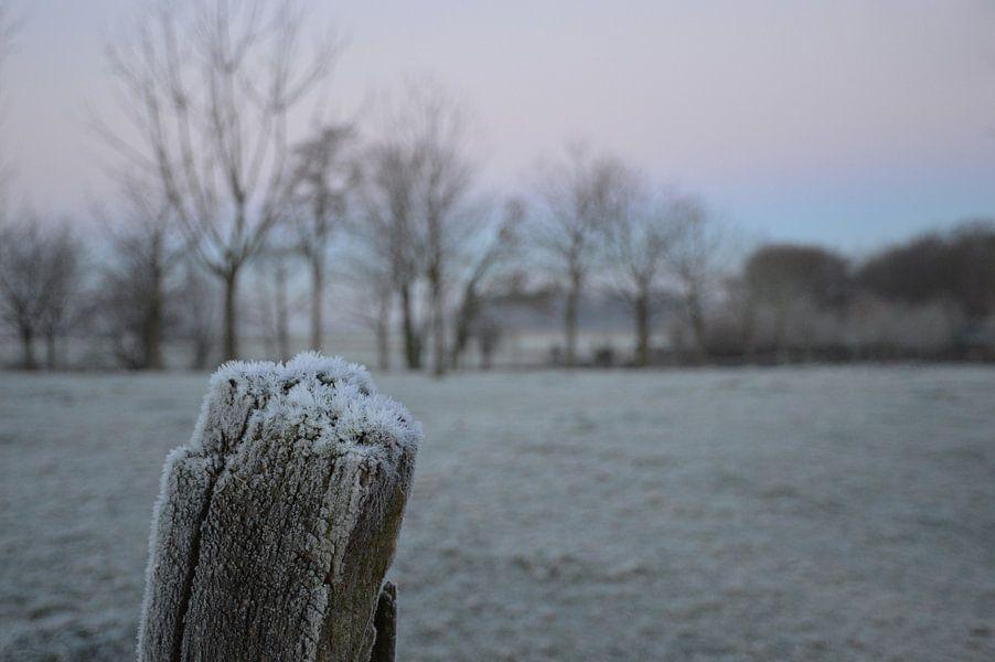 ijs in Nederland van Fraukje Vonk