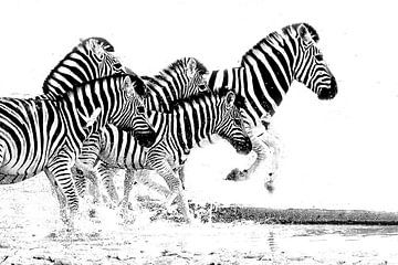 rennende zebra;s  von Henk Langerak