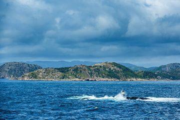 Seezeichen im Lyngdalsfjord in Norwegen von Rico Ködder
