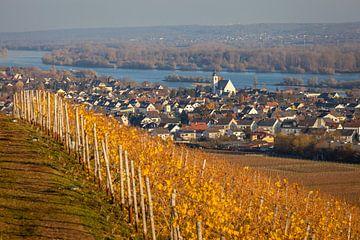 Mittelheim im Rheingau van Christian Müringer