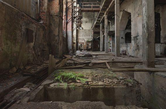 Ruwbouw in een fabriek van Perry Wiertz
