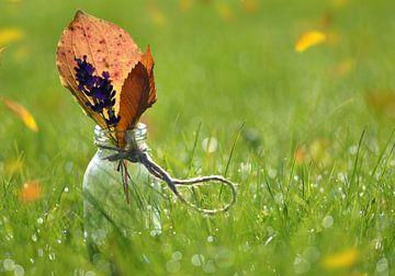 Herbst in Glas von zwergl 0611