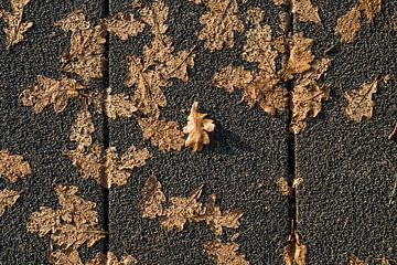 Herfst op straat van Connie Posthuma