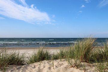 Oostzeestrand van Ostsee Bilder