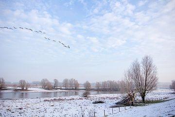 Winters plaatje Tiel von Tess Smethurst-Oostvogel