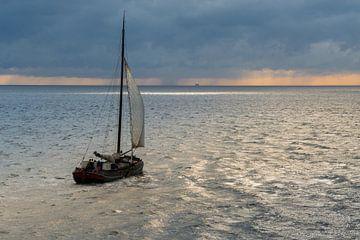 Zeilen op de Waddenzee sur Jelmer Jeuring