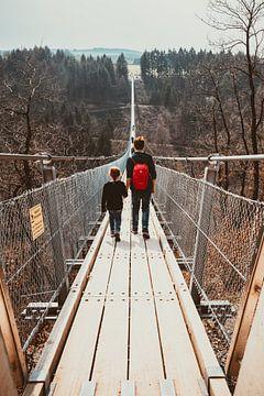 Le pont suspendu de Geierlay sur Peter Deschepper
