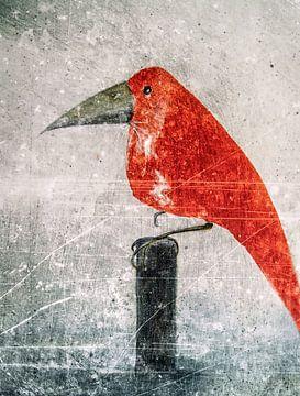 L'oiseau rouge sur Christine Nöhmeier