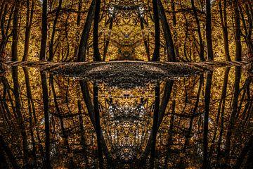 Mirrored reflections von shotbylex