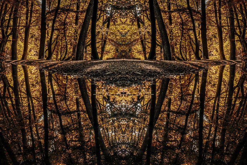 Mirrored reflections van Lex Schulte