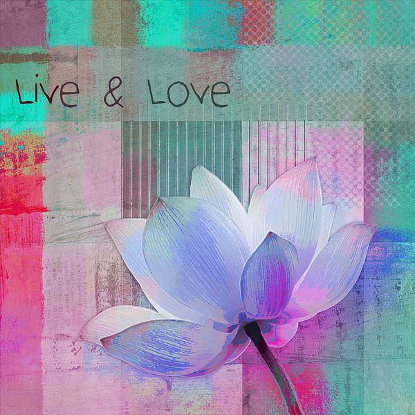 Live n Love - sp99 van Aimelle ML