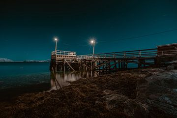 Alta pier van Andy Troy