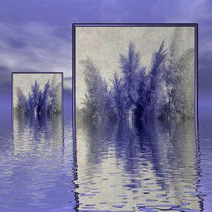 Gras im Spiegel