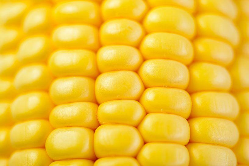 Verse gele maïs op de kolf van Sjoerd van der Wal